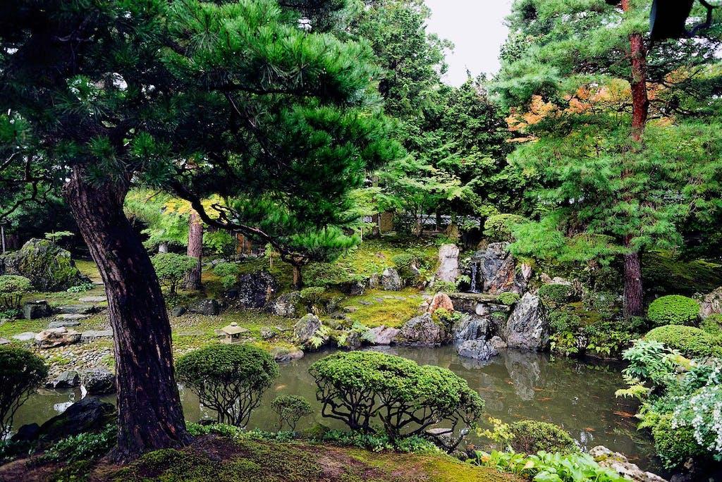 A traditional Japanese Zen garden is a precise work of art.