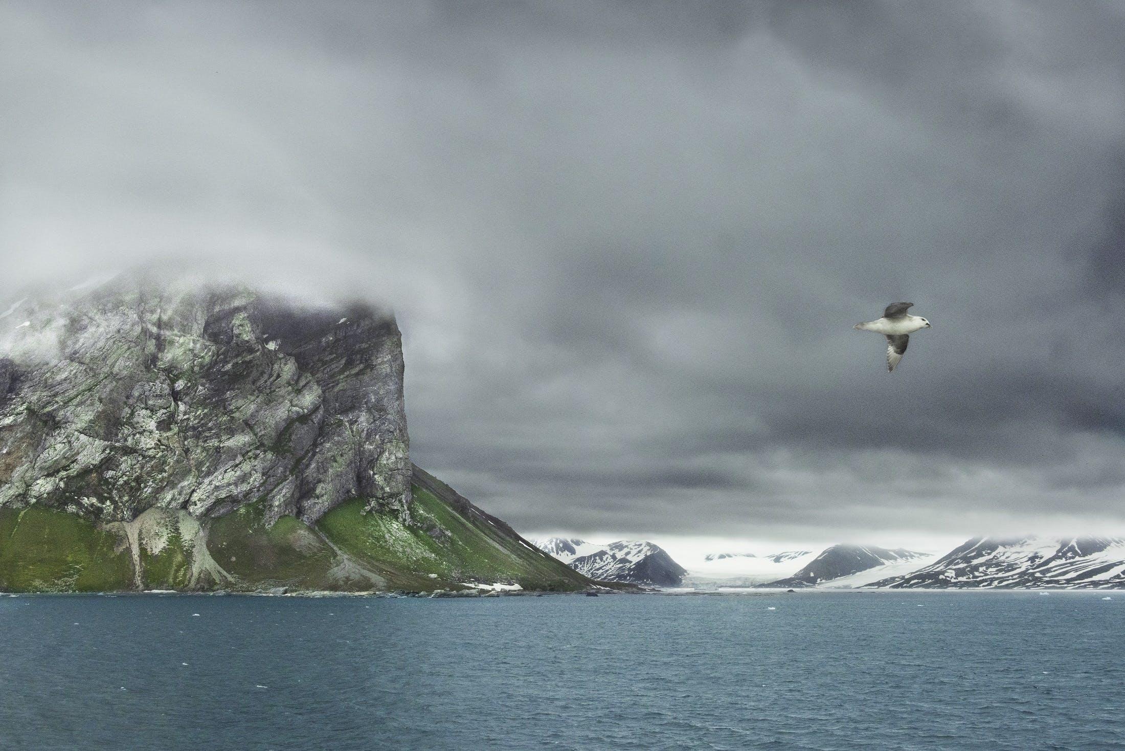 Svalbard by Steve McCurry