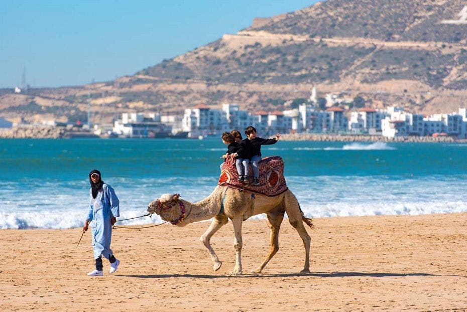 silversea-luxury-cruises-agadir-morocco-beach-camel