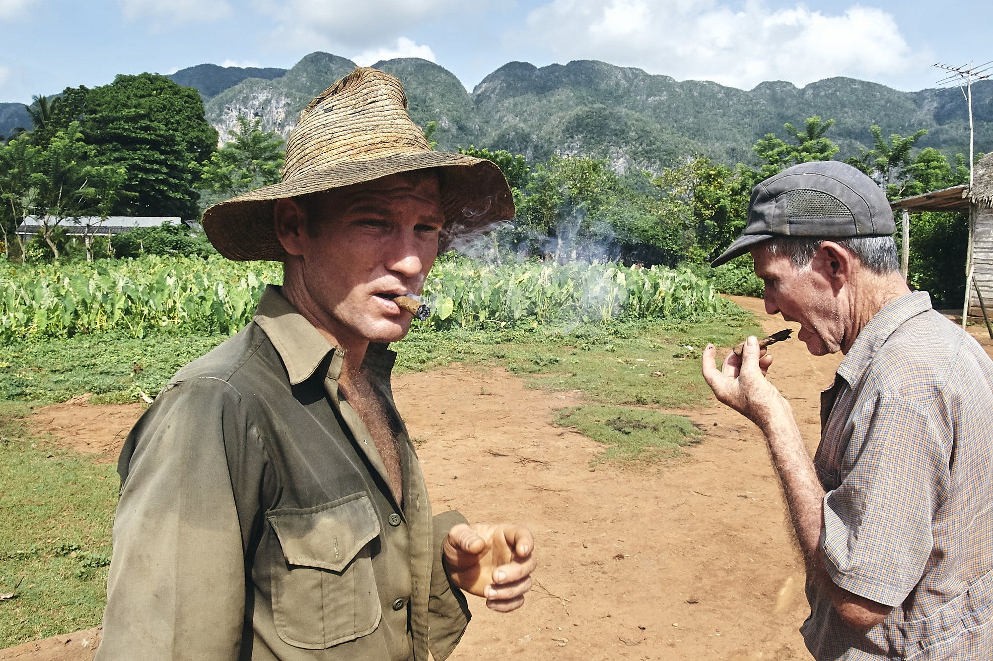 Cuban cigar makers sampling their product.