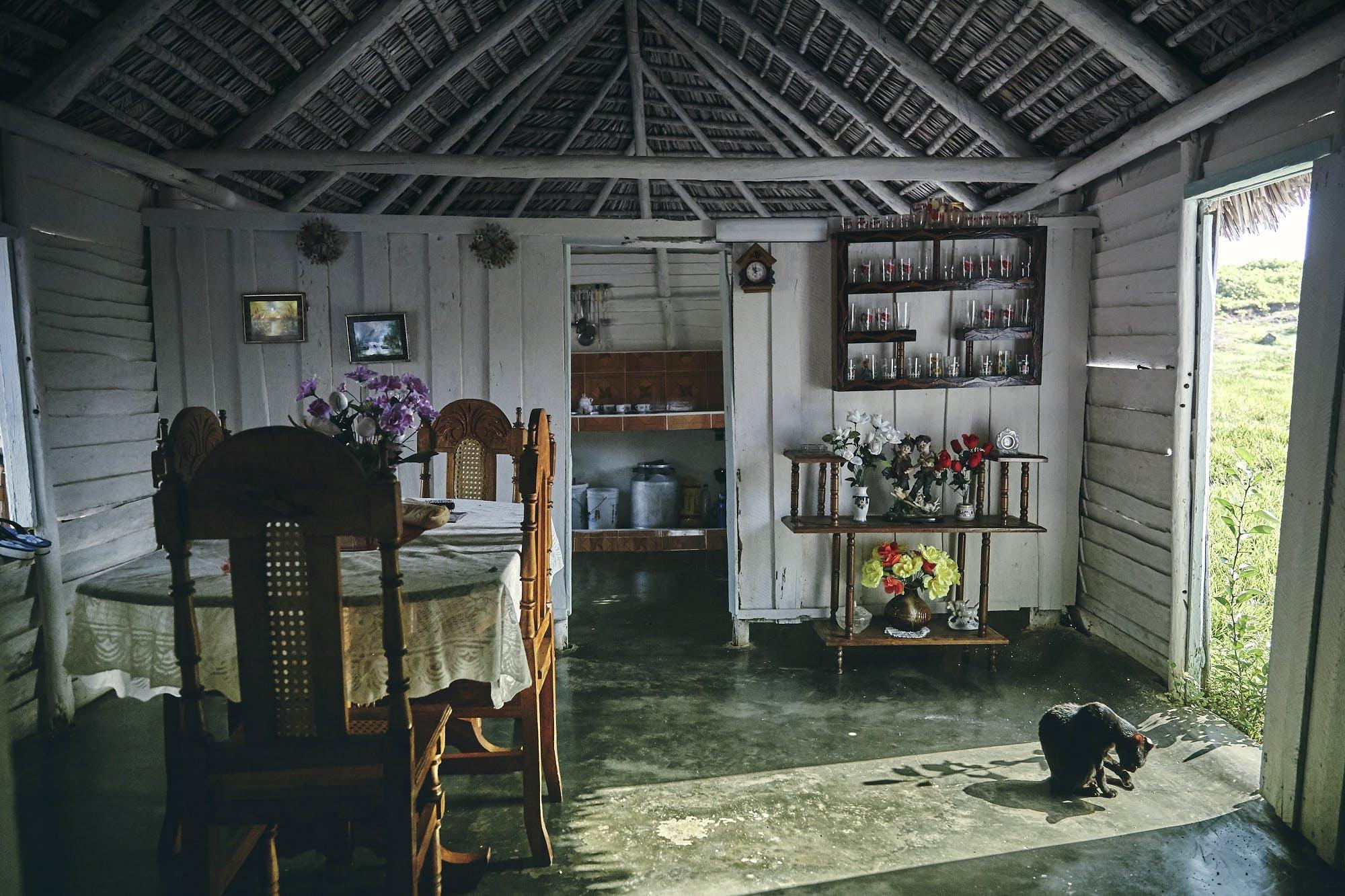 Cuban cigar makers live simple, rustic lives.