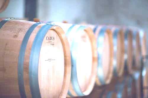 Wine in Bordeaux, France