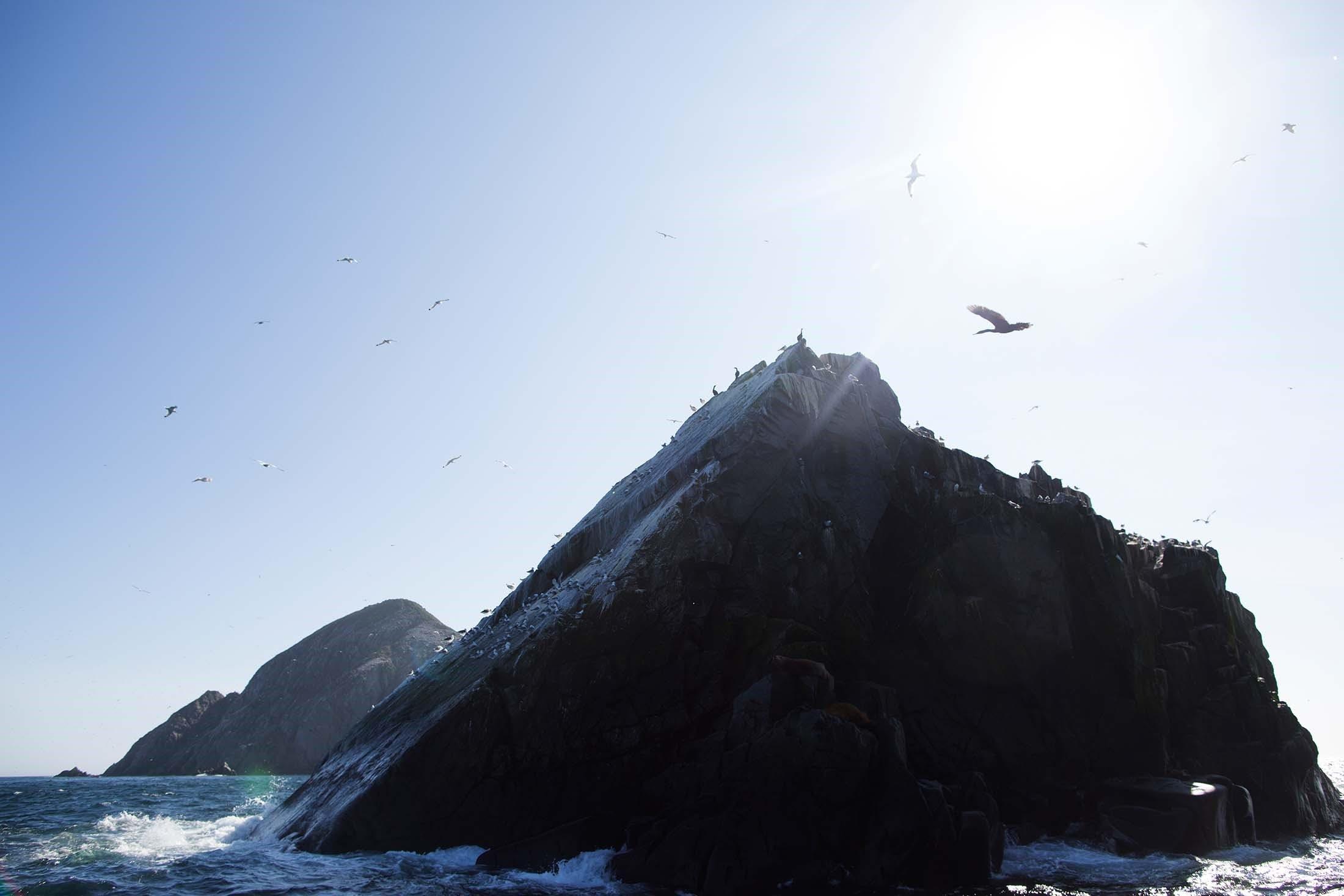 Iony Island, Russian Far East
