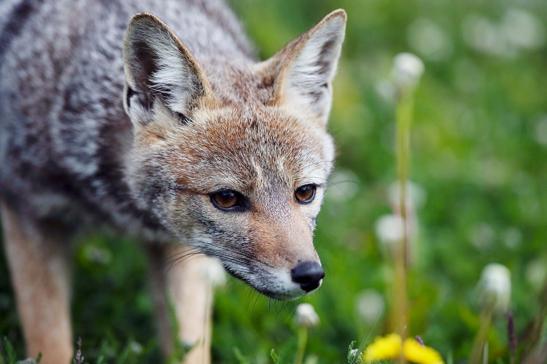 Visit Tierra del Fuego National Park