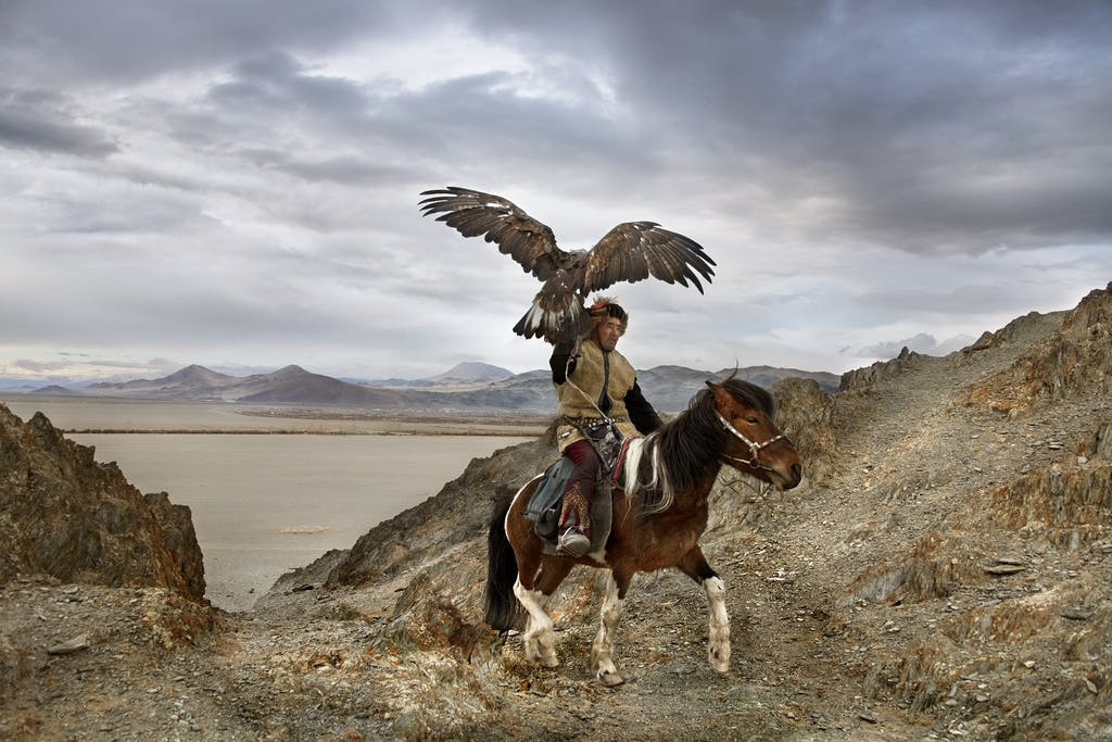 Eagles in Mongolia by Steve McCurry