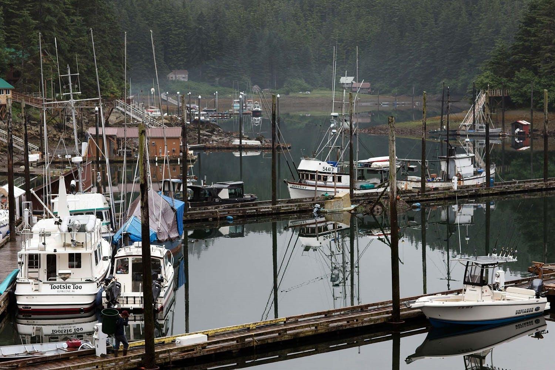 alaska salmon fishing trips
