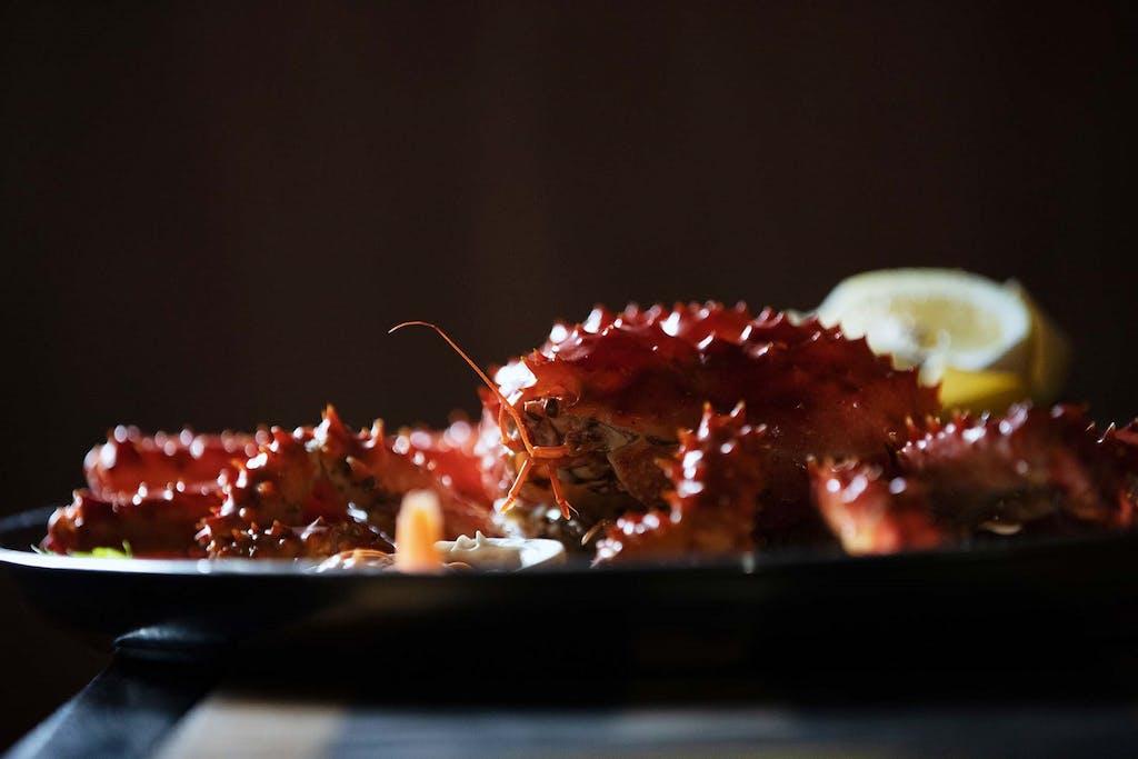 Centolla, southern king crab, Tierra del Fuego