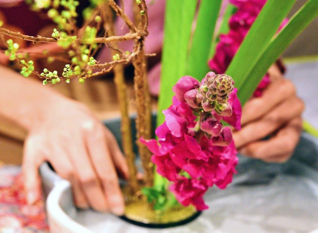 Japanese Ikebana - Asia's artisans