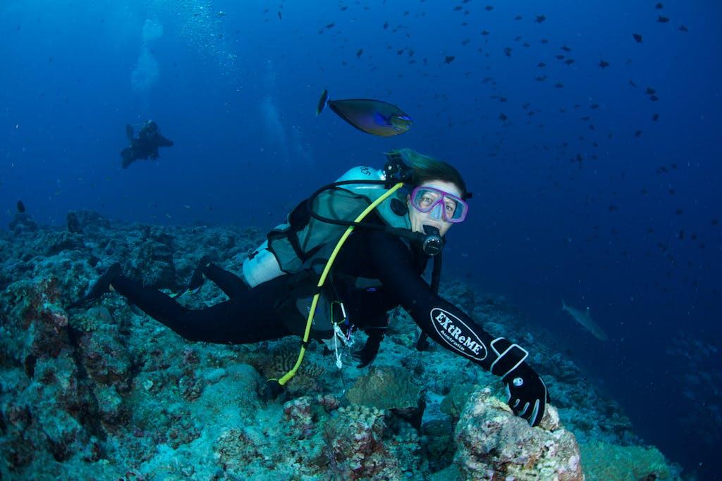 Diving Palau Micronesia