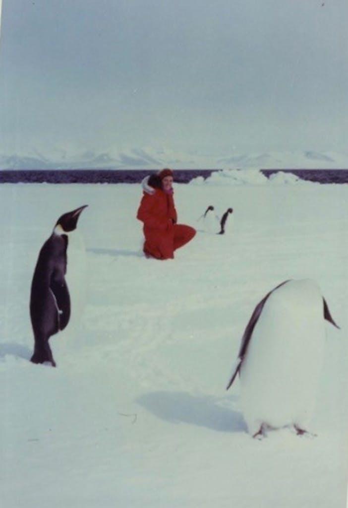 historical photograph of Antarctica