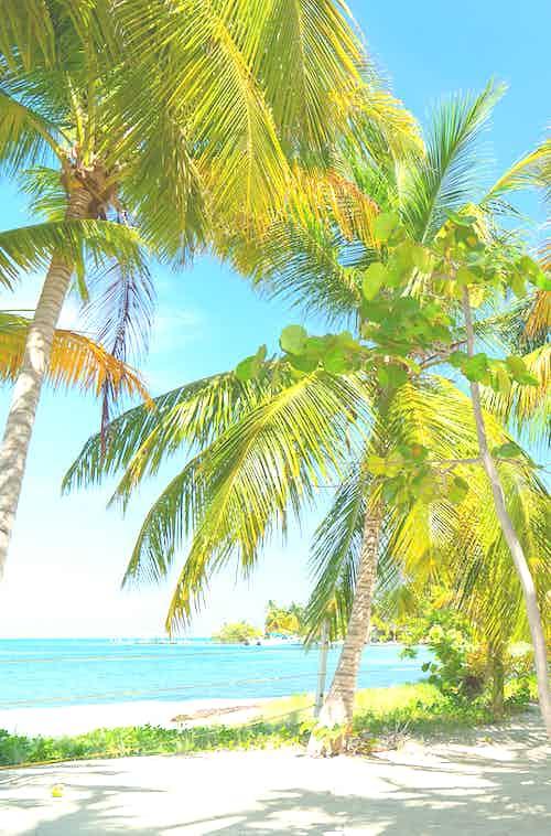 cruises to providencia island
