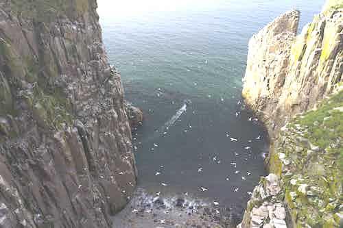 Cape Kuyveveem