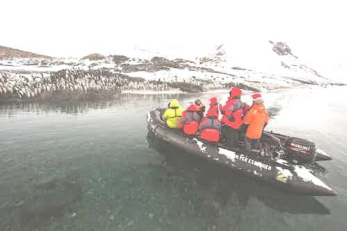Zodiac tour in Antarctica