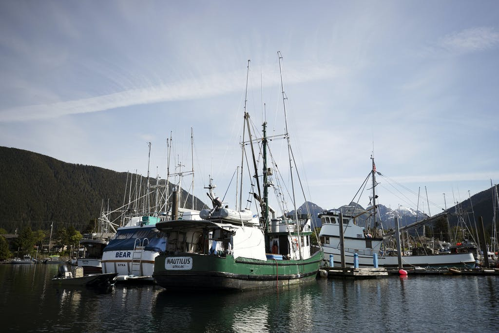 FIshing boats in Sitka, Alaska.