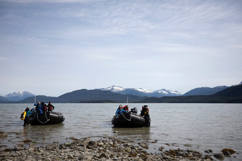 Zodiac tour from Haines, Alaska