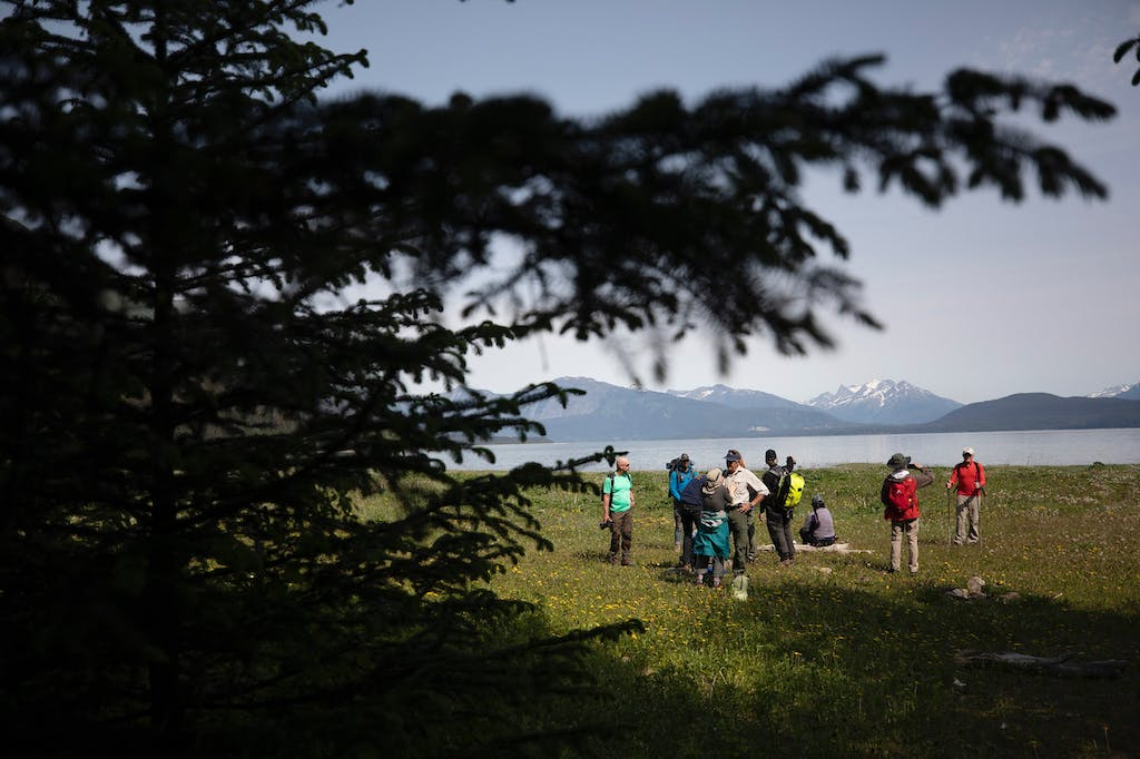 Silversea guests hike to Davidson Glacier