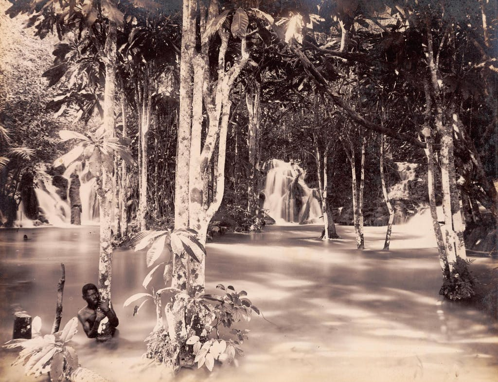 Elfin Grotto, Jamaica