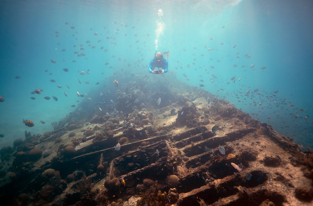 A diver explores a wreck in Barbados
