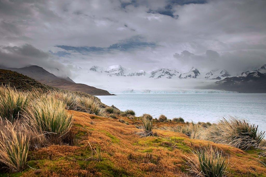 South Georgia island in the subantarctic