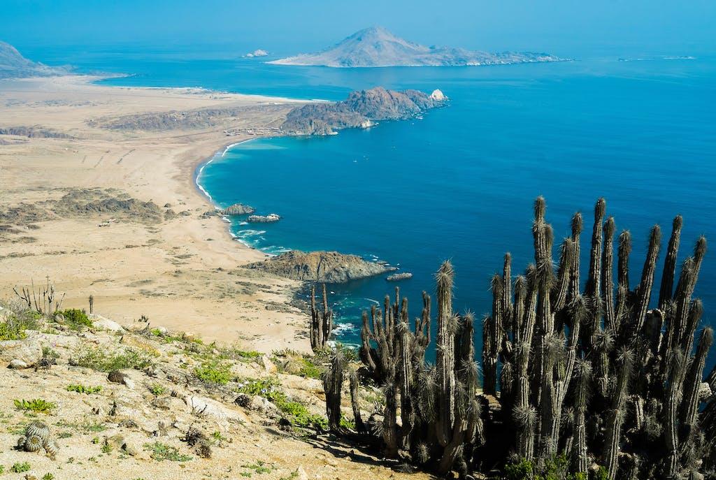 Isla Pan de Azúcar, Chile