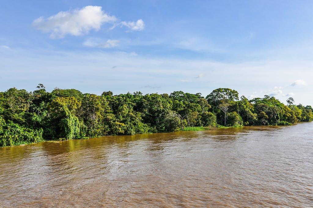 Amazon landscapes in Brazil