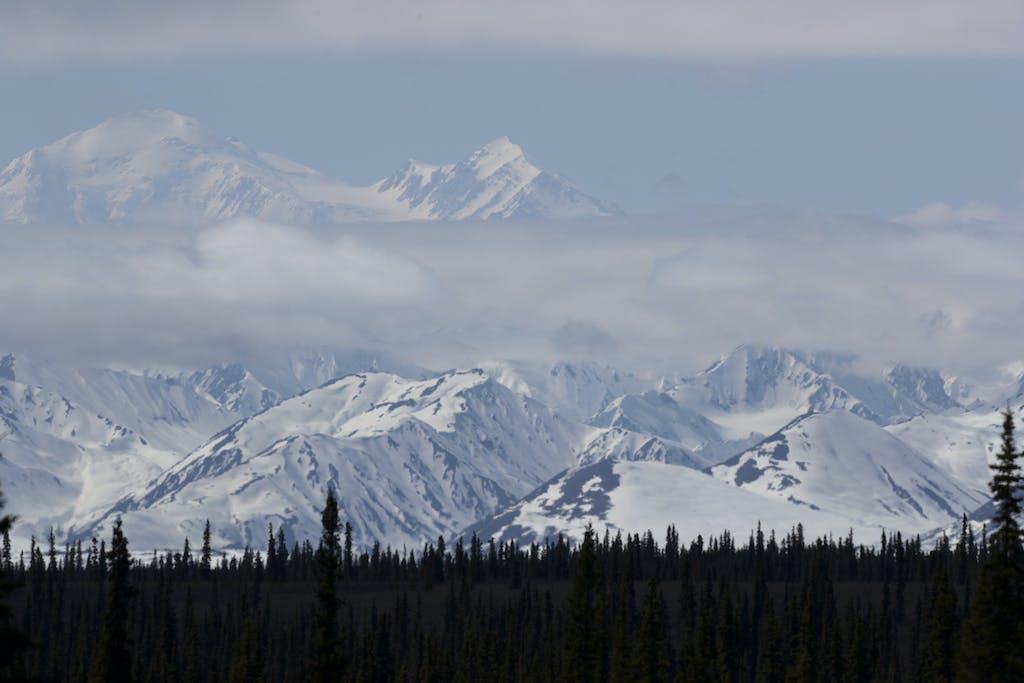 Denali Park ranger tips for a visit